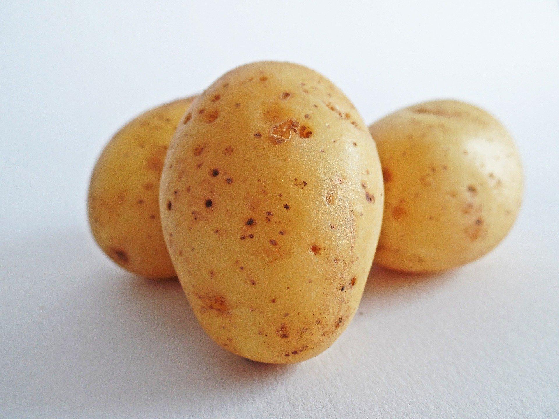Kartoffeln, mehlig