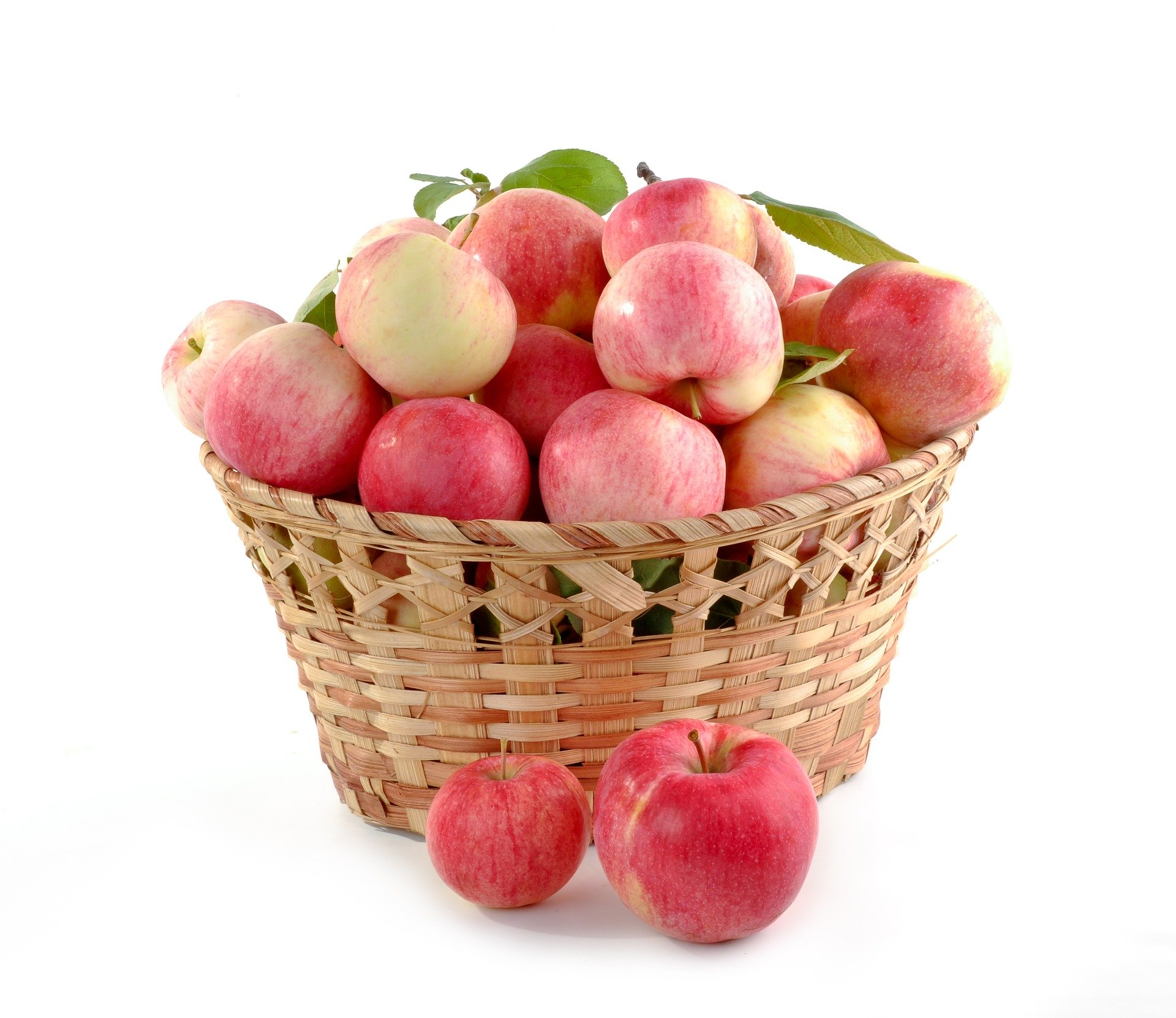 Äpfel Jonagold gelegt